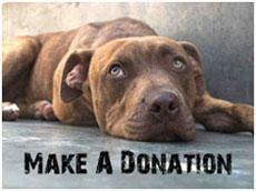 make_a_donation2